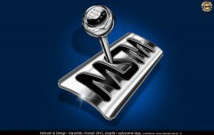 projekt i wykonanie logo dla firmy MSM