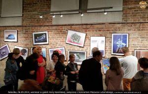 Wystawa Obrazy bez Faktury – galeria Anny Kareńskiej 2014